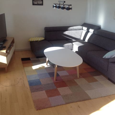 Nice apartment in Nuussuaq - Nuuk - Apartment