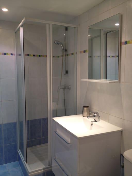 lavabo et douche dans la salle de bains