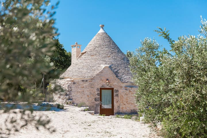 Not only an Apulian charme and nature experience.. - Noci - Annat