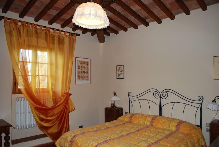 camera Avorio