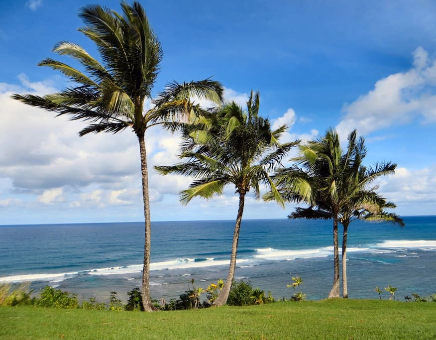 Palms sway in the breeze just steps from your lanai