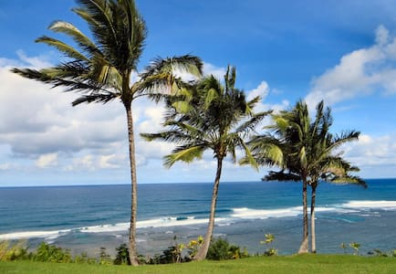 Hale Ho'okipa Kauai - Princeville - Lyxvåning