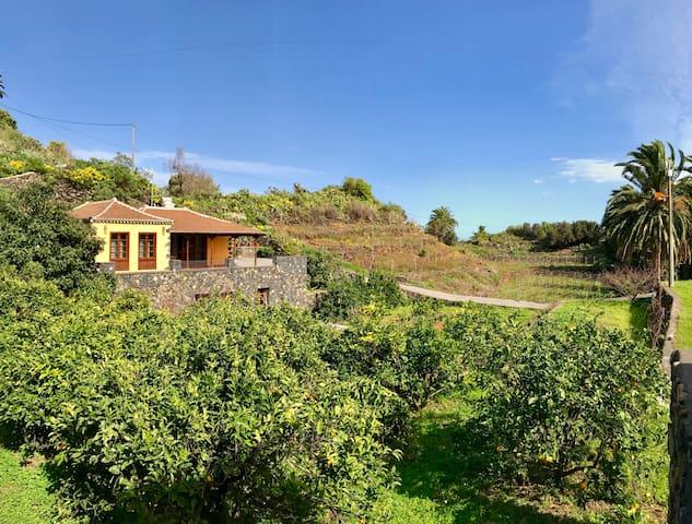 RUSTIC HOUSE LA MONTAÑA - Breña Baja - Rumah