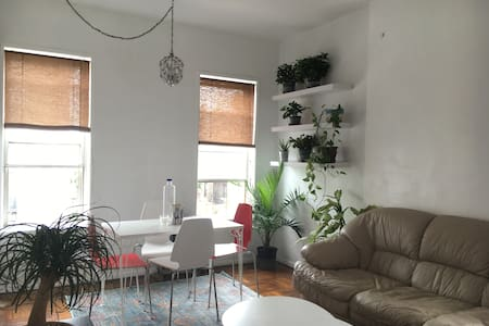 Cozy and Clean Apartment Steps from Prospect Park - Brooklyn