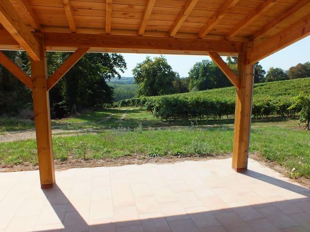 Maison au calme en pleine vigne ! - Nogaro - Casa