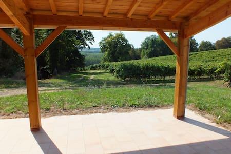 Maison au calme en pleine vigne ! - Nogaro