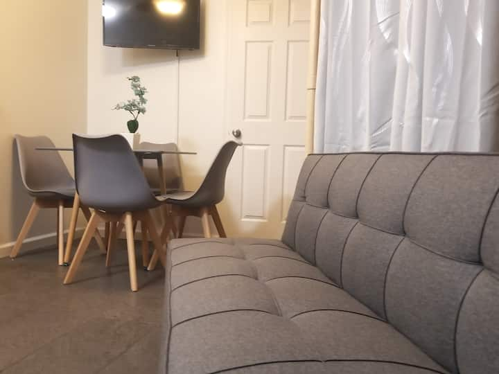 Large & Cozy 2 bedroom APT in the Lower East Side