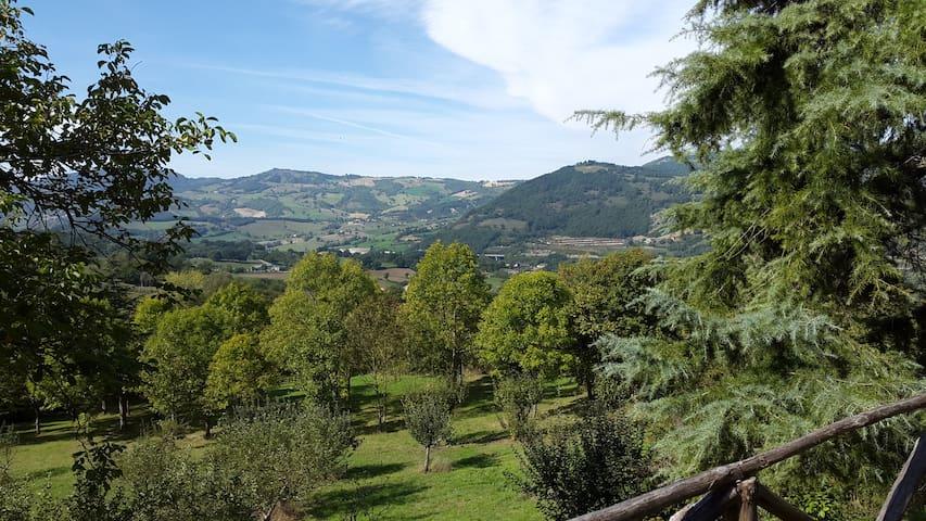 Cá Ridapio - Bagno di Romagna - House