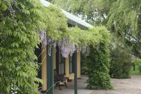 Omeo Motel - Queen Room - Omeo - Bed & Breakfast