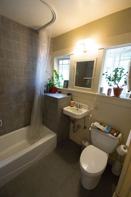 Bathroom - there isn't a room in the house without a jade plant or two.