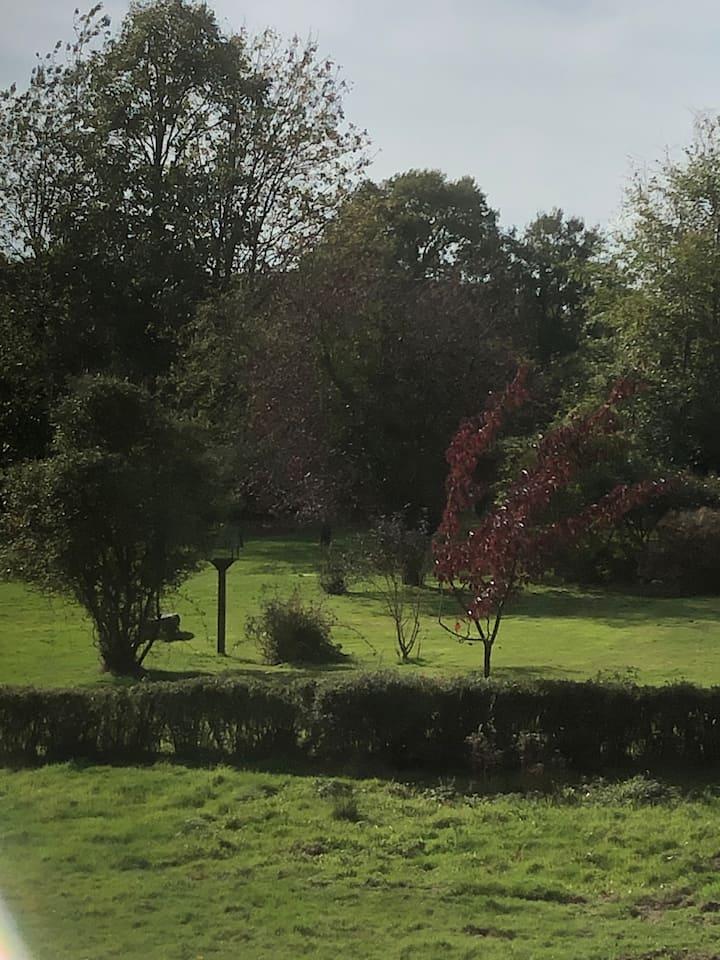 Ashdown Forest hideaway in large garden