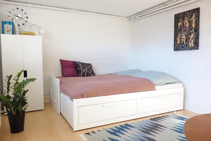 Nice room, 15 min from center, 30 to the airport