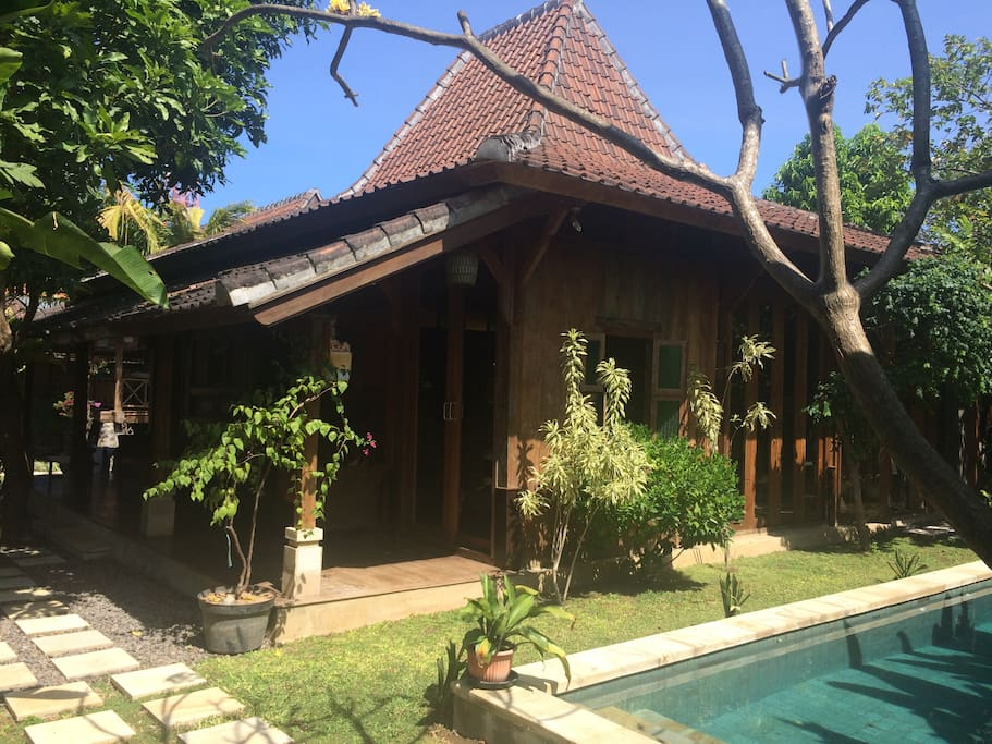 Main house (joglo) and pool