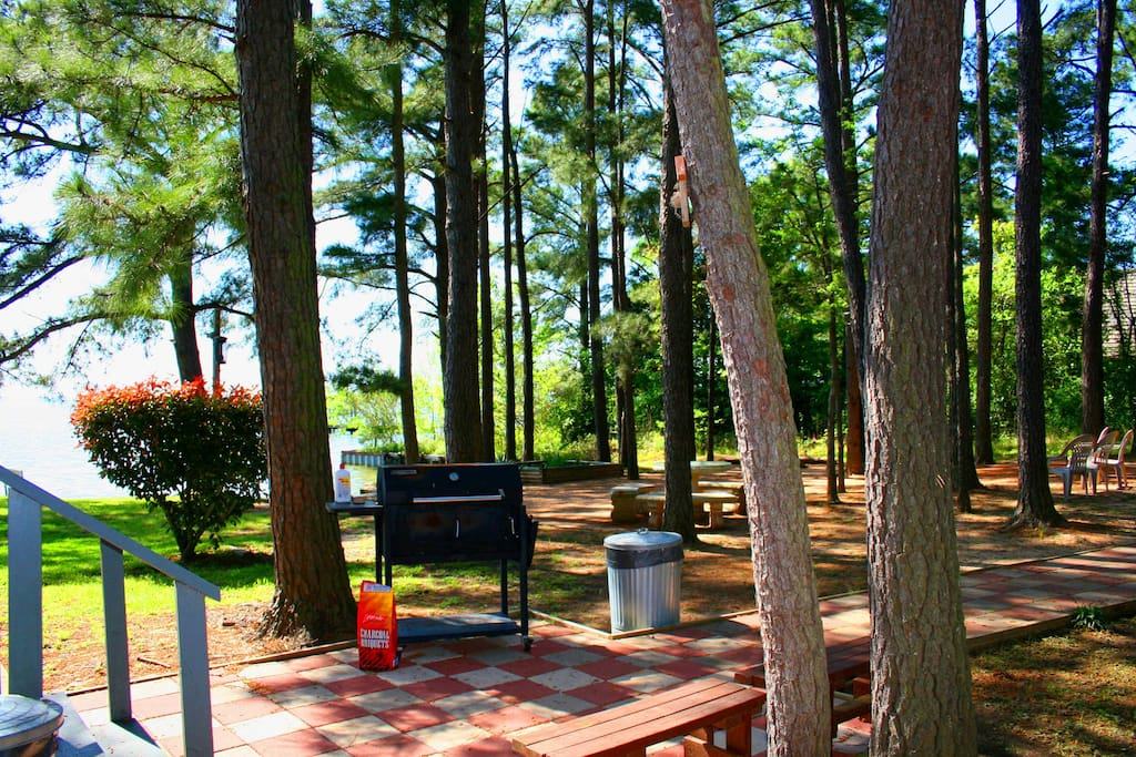 BBQ area: Picnic Table, Charcoal Grill/Smoker, Horseshoes, Birdhouse, Sitting Swing, & Campfire Area