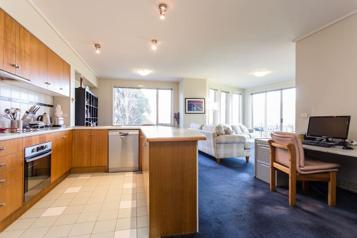 Spacious St Kilda Rd Apartment With 2 Queen Beds - Melbourne - Appartement