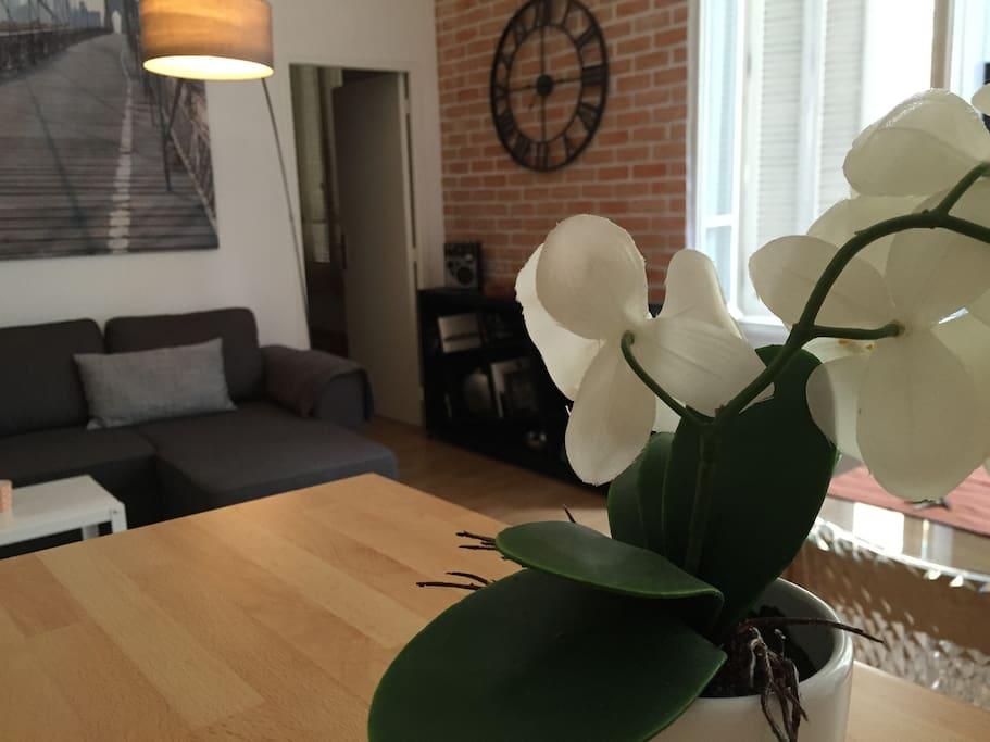Appartement centre cannes derriere la croisette for Appartement design cannes