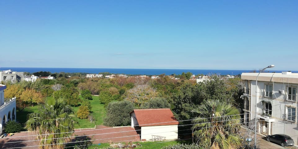 A stunning sea view from the balcony
