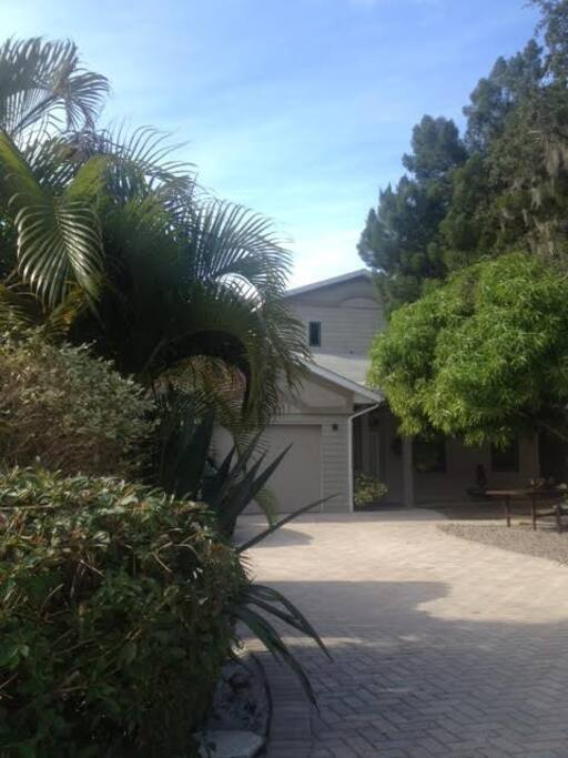paver driveway and multiple plantings
