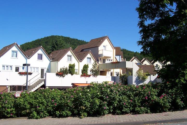1-Zimmer-App.Edersee,Halbinsel Scheid -Urwaldsteig