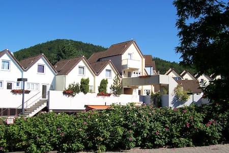 1-Zimmer-App.Edersee,Halbinsel Scheid -Urwaldsteig - Lejlighedskompleks