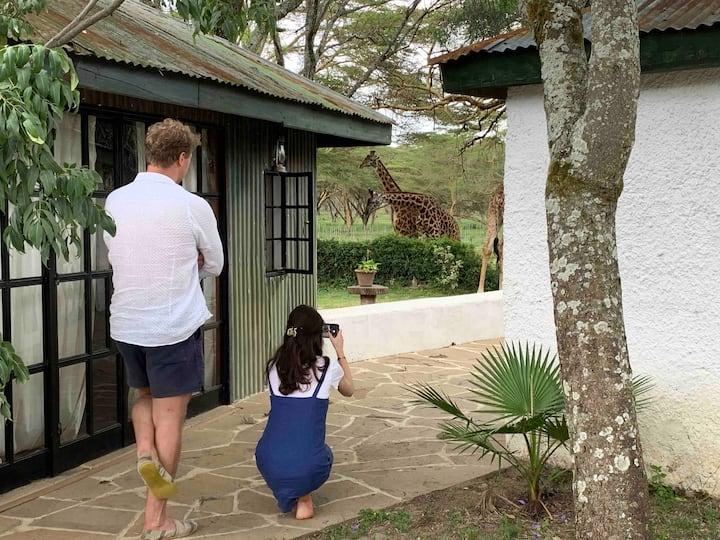 Rose Cottage - a modern cottage on Sanctuary Farm
