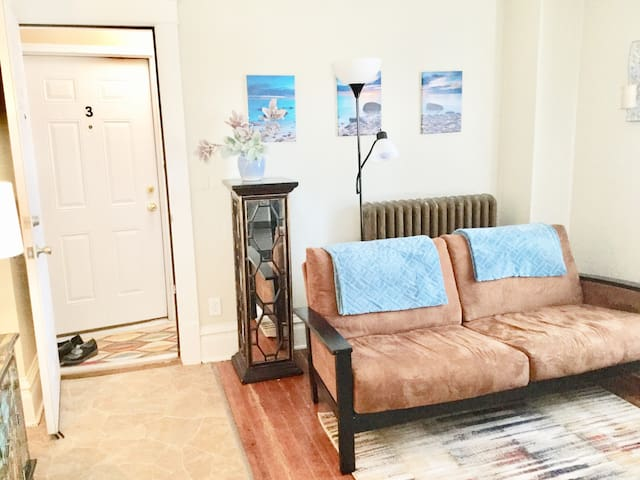 Bright, Spacious & 1 Mile from Mayo Clinic! Apt #4