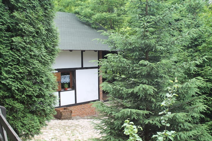 House in natural paradise - Busovača - House