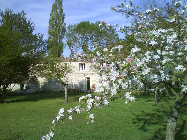 L'Authentique en Périgord cheminée - Naussannes - Apartment