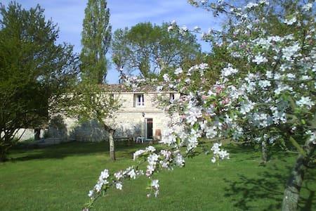 L'Authentique en Périgord cheminée - Naussannes - Lejlighed
