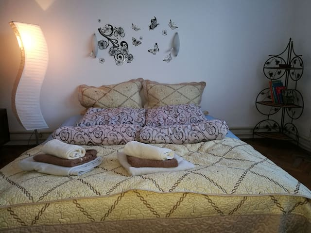 Central Tuzla apartment - feel at home in Tuzla - Tuzla - House