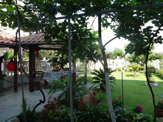 Villa Theo / studio - Nei Pori