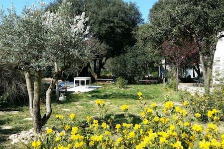 Bel appart  indépendant dans Villas - Argelliers