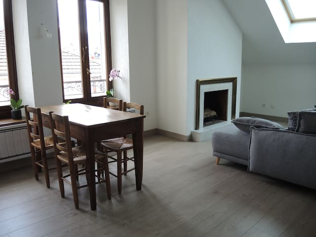 Double bedroom in a charming flat, Annecy center
