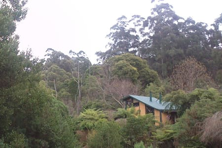Yarra Ranges Cosy Mountain Retreat - East Warburton