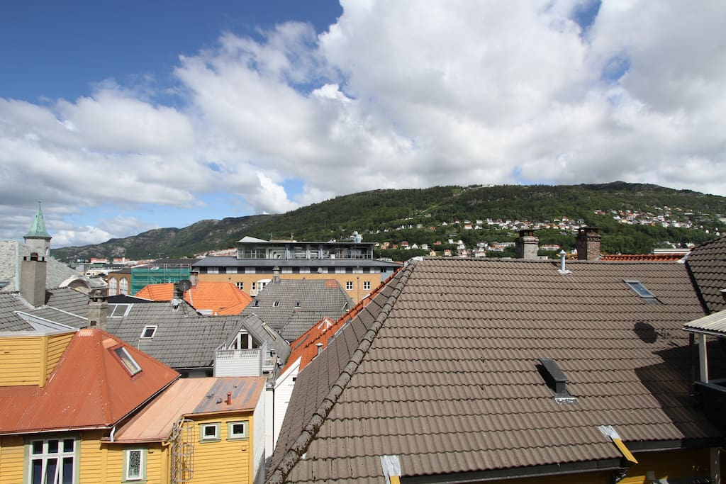 You can see the popular mount Fløyen...
