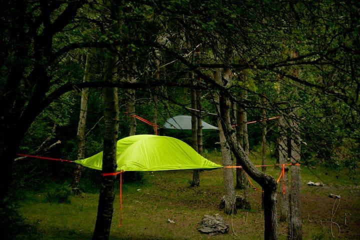 Bivouac suspendue dans les arbres P - Salles-Curan - Tenda de campanya