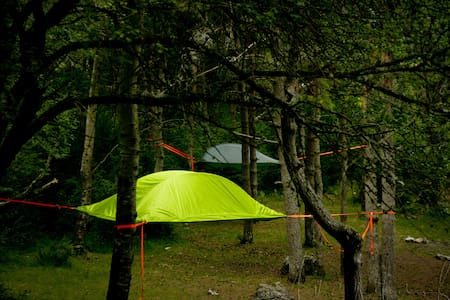 Bivouac suspendue dans les arbres P - Salles-Curan