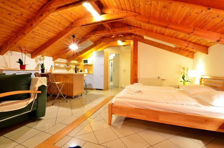 Garden Apartment with Terrace - Vienne - Appartement en résidence