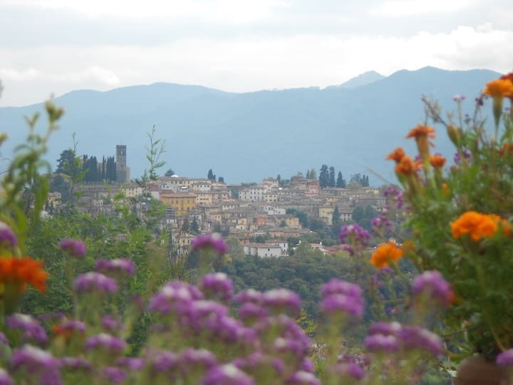 Holiday Villa for rent in Barga, Lucca, Tuscany