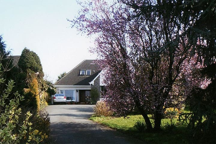 Avondale B & B., Dublin Road, Naas. - Naas - Bed & Breakfast