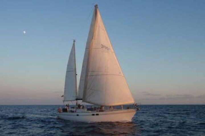 St. Martin on a sailing boat - Marigot