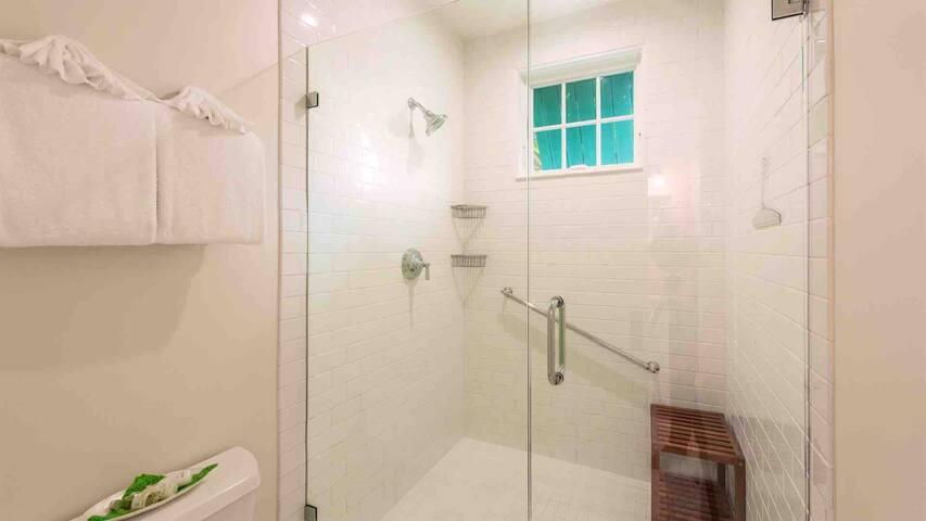 22-623ANGELA-16x9-masterbathroomshower.jpeg