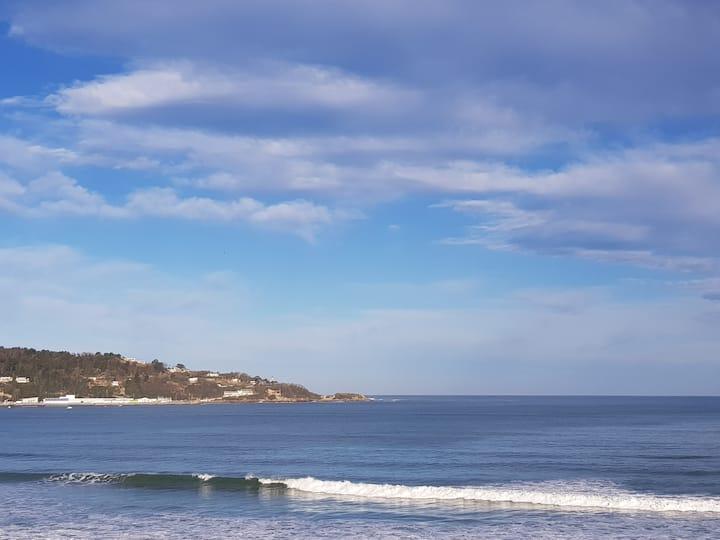 Splendide T2 face à la mer, terrasse, wifi