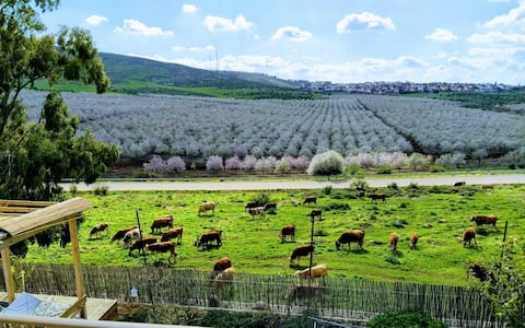 Blue Chalet Gilboa