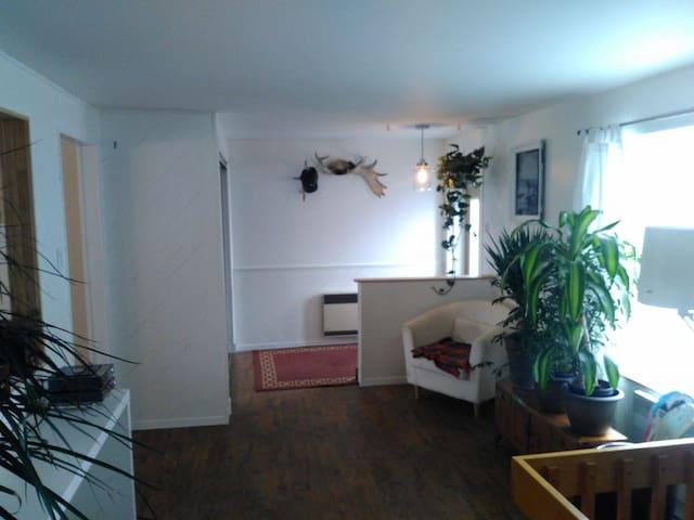 Super appartement (grande terrasse, BBQ...) - Québec City - Appartement