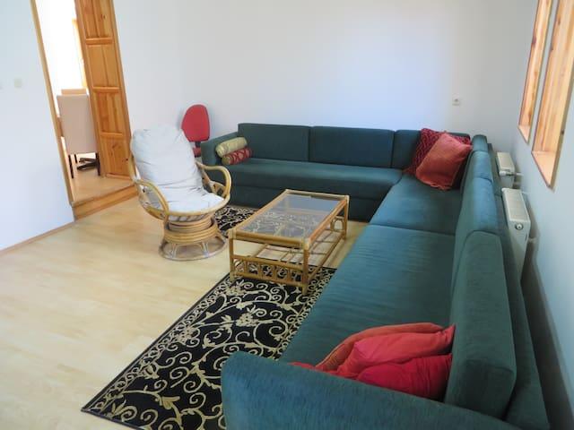 Beautiful apartment near center, free parking&wifi - Sarajevo - Other