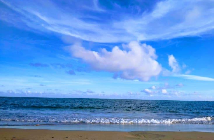Guidebook for Itacimirim Beach