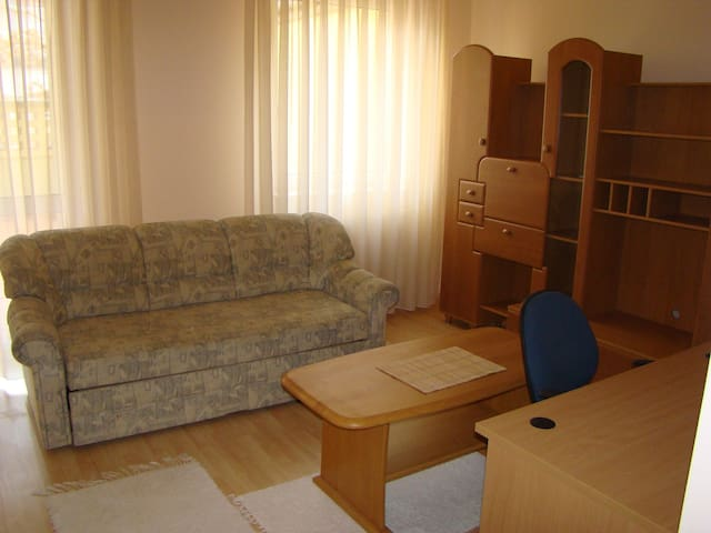 Quiet, centrally located apartment tramways - Debrecen - Apartment