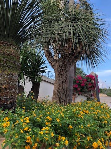 Graziosa casa vacanza indipendente con giardino