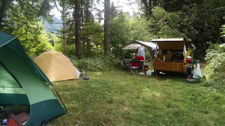 Van Camping @ Zigzag Mountain Farm